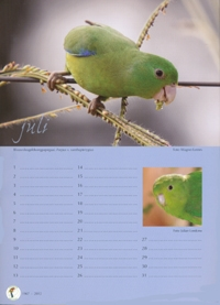 Verjaardagkalender