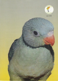 1999 nr.06 Juni