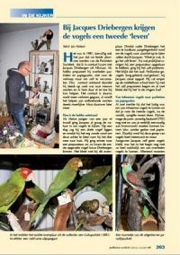 2012 nr.11 December